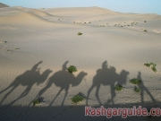 kashgar-dawakul-lake-15