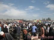 kashgar-lifestock-market-16