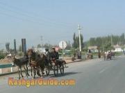 kashgar-sunday-bazzar-4
