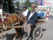 kashgar-sunday-bazzar-5