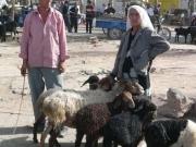 kashgar-sunday-bazzar-6