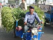 kashgar-sunday-bazzar-7