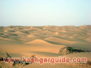 2-Day Taklamakan Desert Camel Trekking and Camping Tour