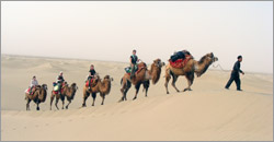 Kashgar Photos
